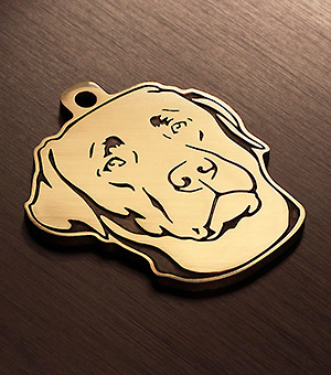Адресник для собаки породы Лабрадор