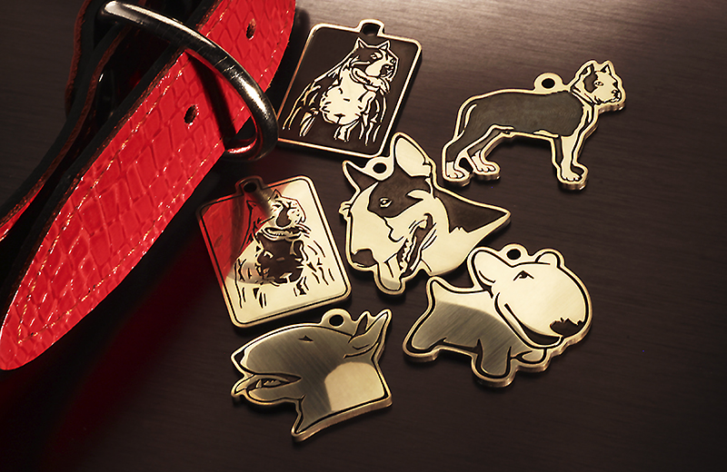 Tag for bull Terrier and Staffordshire Terrier dogs