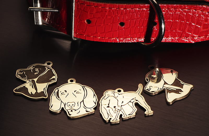Адресники и жетоны для собак породы Веймаранер