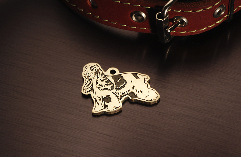 Tag for dogs breed spaniel