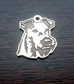 Irish terrier