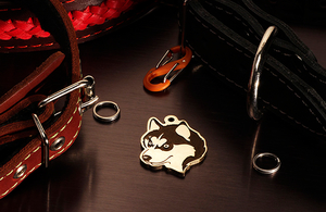 Медальон для собак породы Сибирская хаски