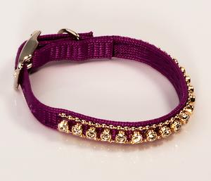 Фиолетовый ошейник со стразами для котов и кошек