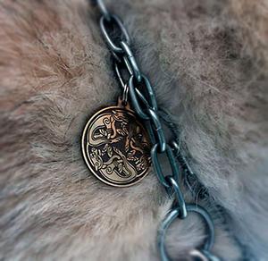 """Медальон для собак """"Бегущие собаки"""""""