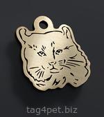 Адресник для котов породы Американский кёрл