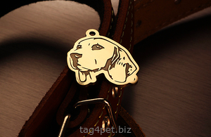 Tag for dog Beagle