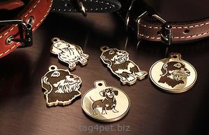 Медальоны для собак породы Такса