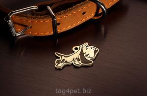 Tag for dog Bassethund