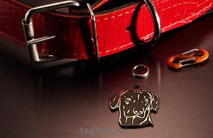 Медальон для собаки Риджбек