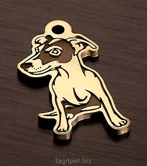 Адресник для собаки породы Джек Рассел терьер