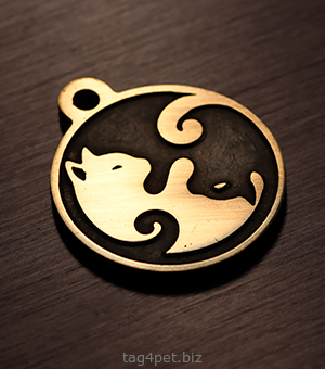Cat Yin and Yang