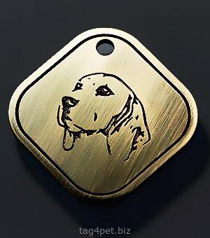 Tag for dog Beagle var.5