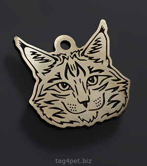 Tag for cats Maine Coon