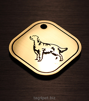 Жетон для собак породы Шотландский сеттер (чёрно-подпалый сеттер, гордон)