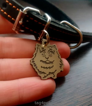 Cat tag Persian